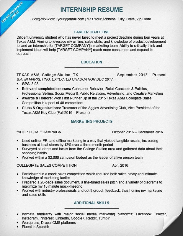 example cv marketing intern