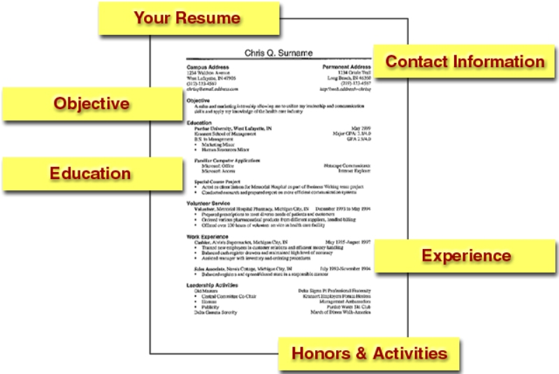 Basic Resume Template Samples Resume Templates - Basic Job Resume Template