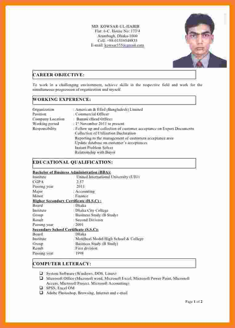 sample cv format in word