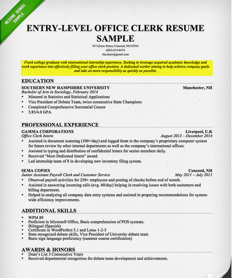 What do i write on my first resume   first resume
