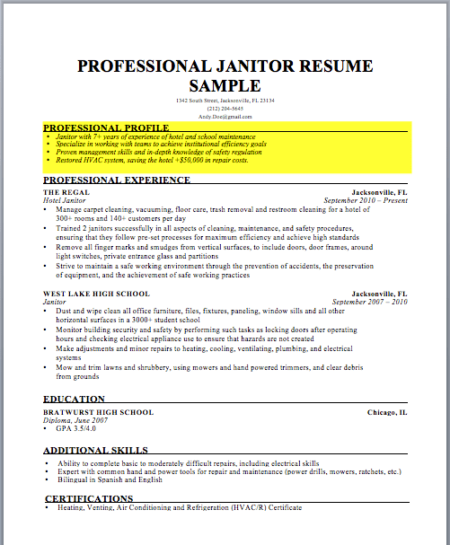 cv profile summary template