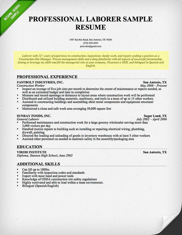 resume genius professional profile