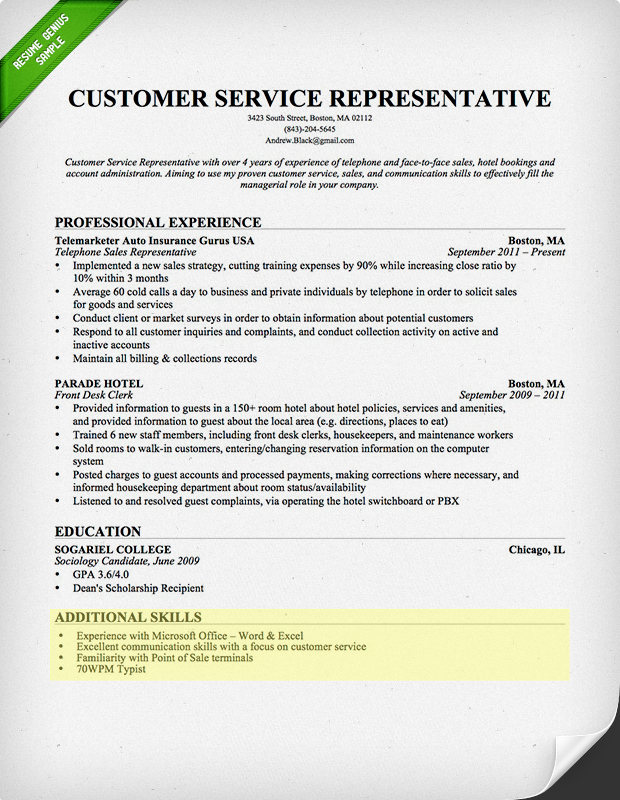 Additional Skills Resume Examples - Examples of Resumes