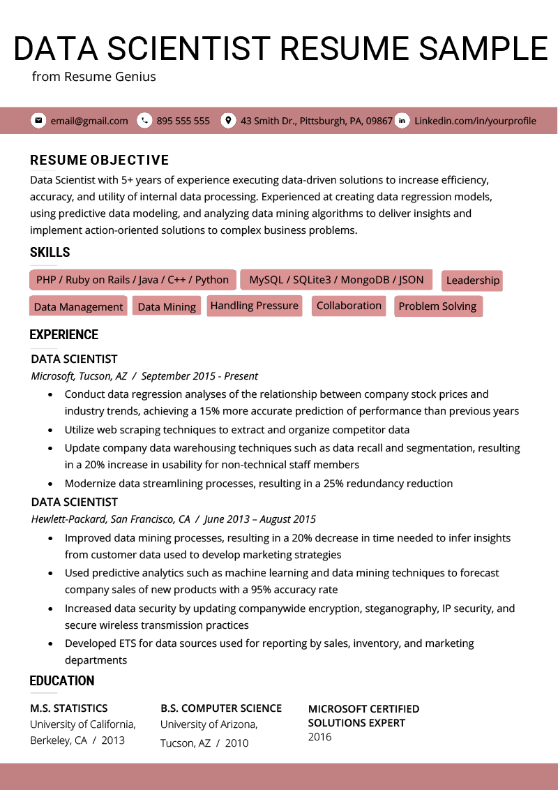 data scientist cv example