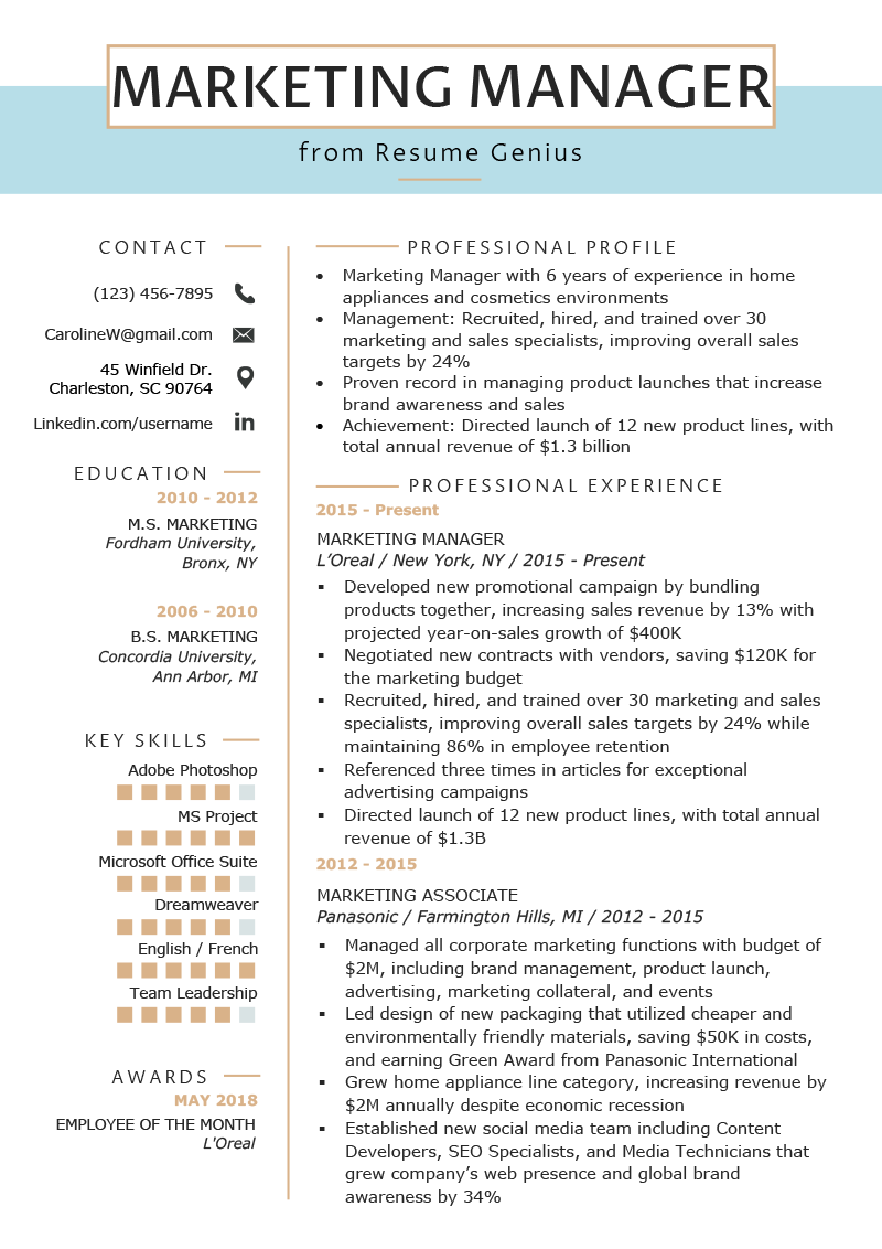 cv english marketing director