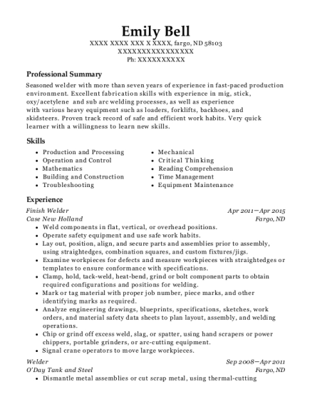 auto detailer resume sample