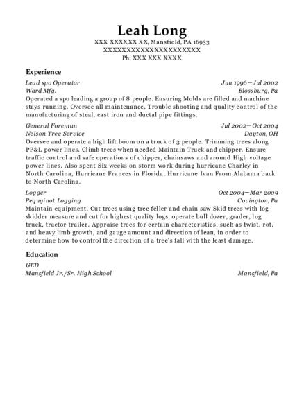appraiser resume