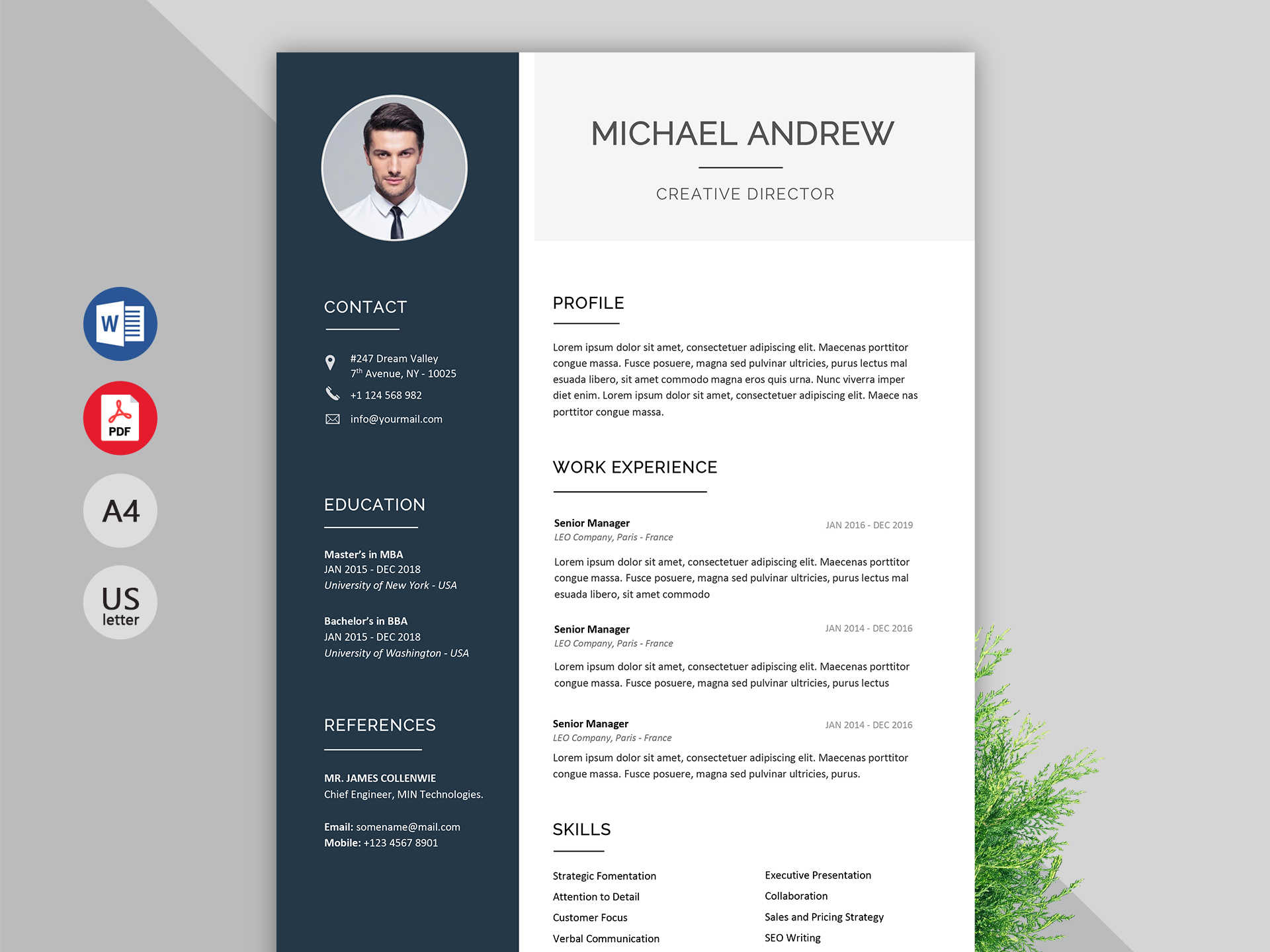 infographic resume template ms word