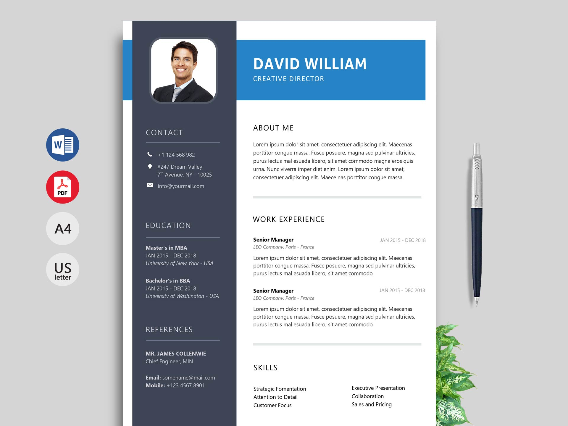 windows resume templates download