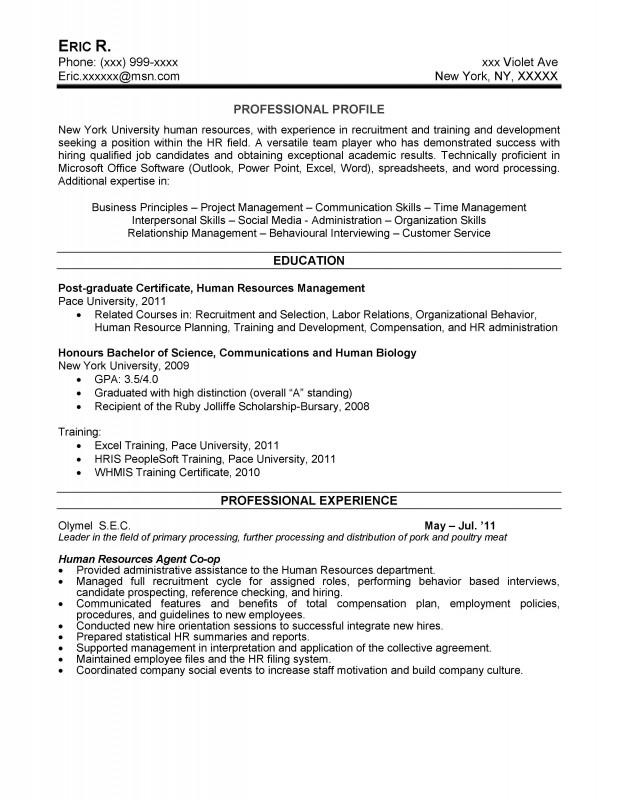 Resume writing service hamburg ny