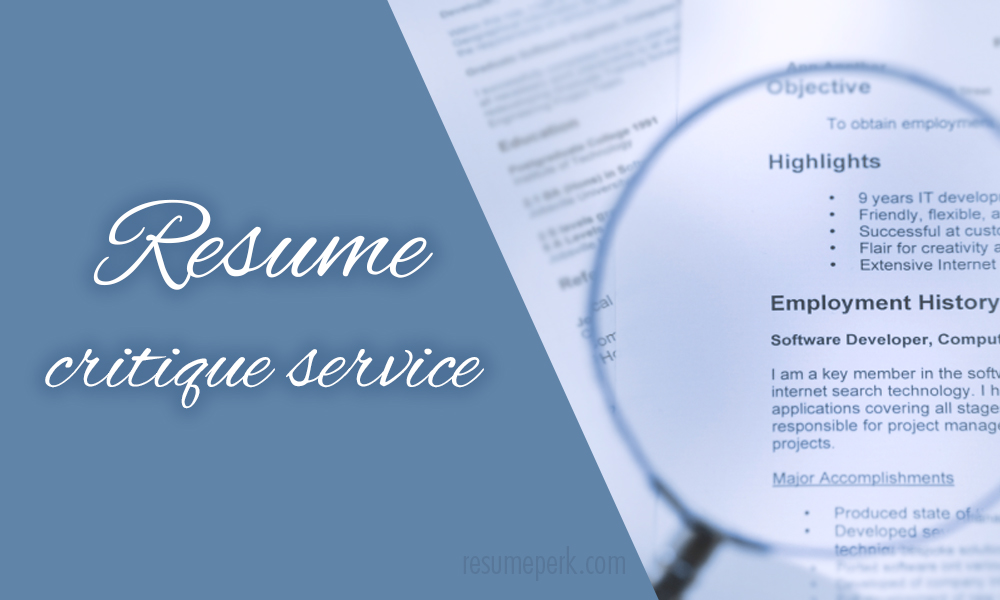 What You Can Really Get From A Resume Critique Service resumeperk