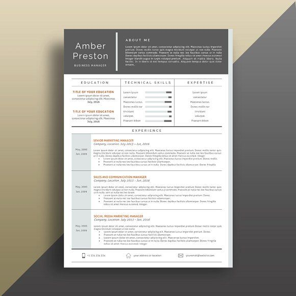 Resume Templates  Design  Professional Resume/CV Template