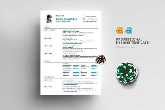 Resume Templates  Design  Modern  Professional Resume
