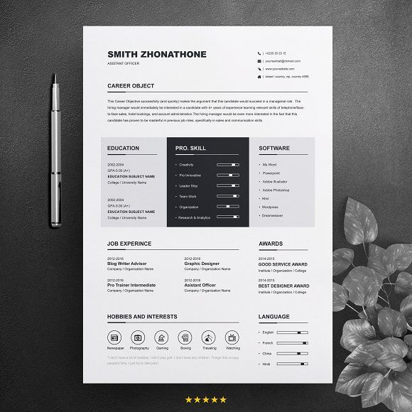 Resume Templates  Design  One Page Resume / CV Design Template