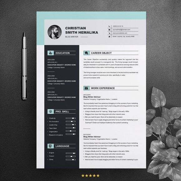 Resume Templates  Design  Professional Resume Template CV