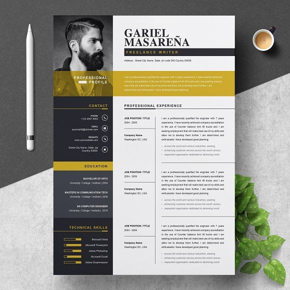 Resume Templates  Design  Professional Word Resume CV Template