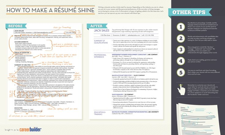 Resume infographic  How to Make Resume Infographic Resume Dos And