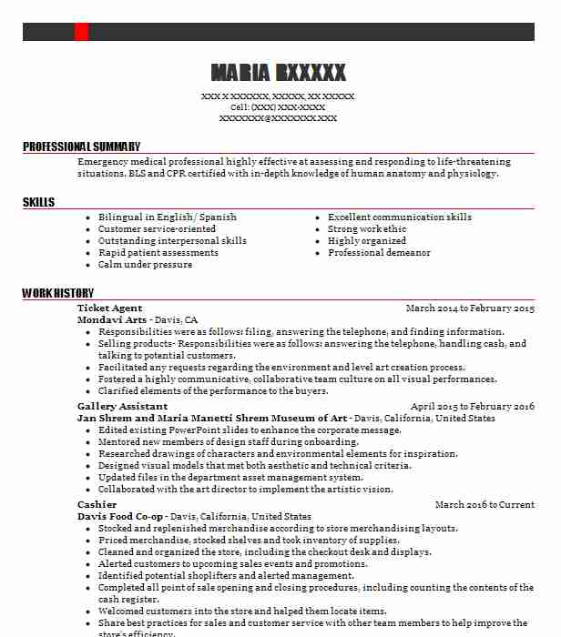 Ticket Agent Resume Sample Travel And Tourism Resumes LiveCareer