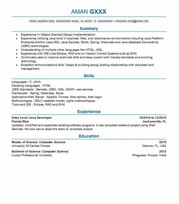 Entry Level Java Developer Resume Sample LiveCareer - Java Web Sphere Developer Resume