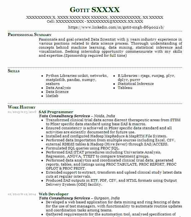 Sas Programmer Resume Sample Technical Resumes LiveCareer