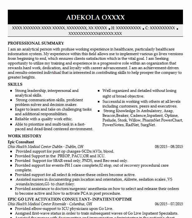 resume objective for consultant position