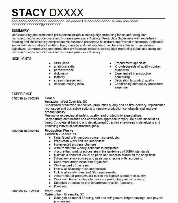 examples of career summary on a resume