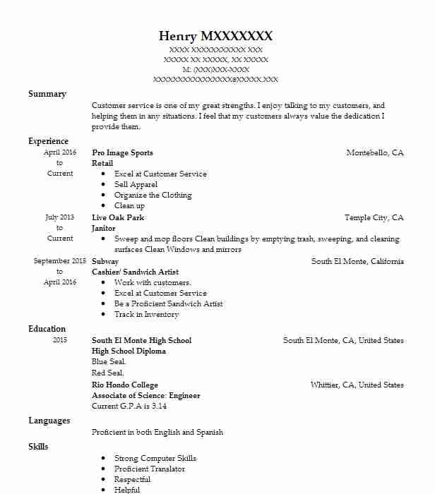 resume examples with professional summary