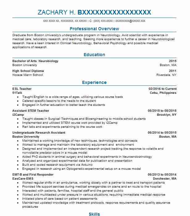 Esl Teacher Resume Sample Resumes Misc LiveCareer