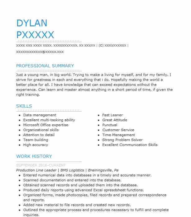 Production Line Leader Resume Sample Leader Resumes LiveCareer