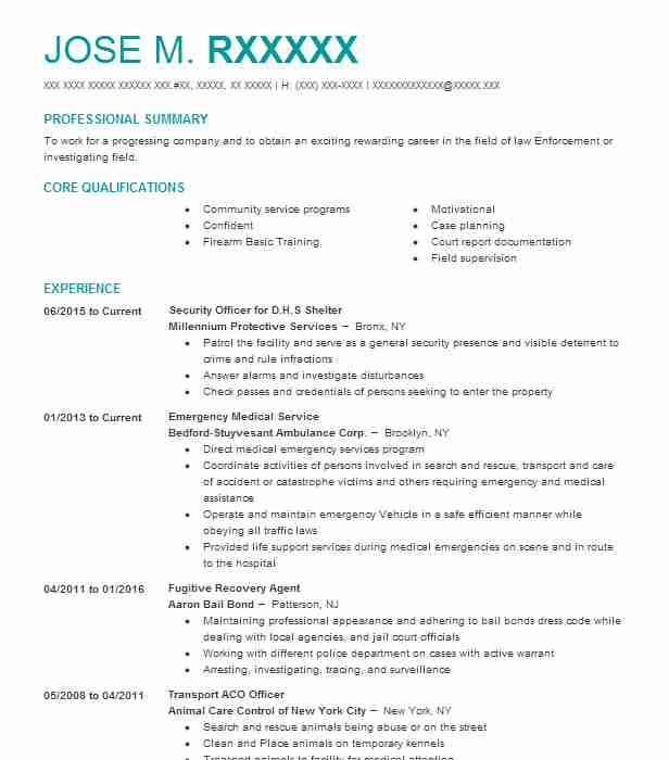 879 Bounty Hunters Resume Examples Law Enforcement And Security - Surveillance Agent Sample Resume