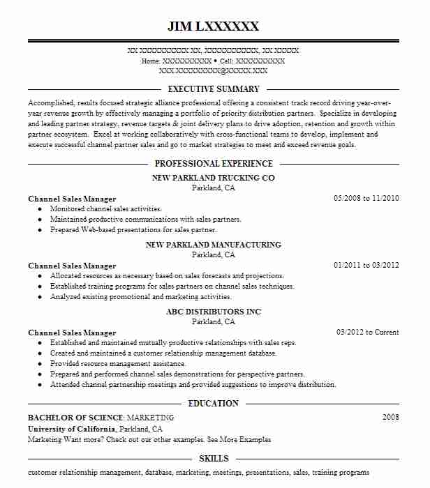 133 Program Management (Management) Resume Examples in Connecticut - Channel Sales Resume