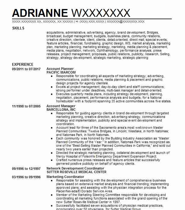 Account Planner Resume Sample Planner Resumes LiveCareer