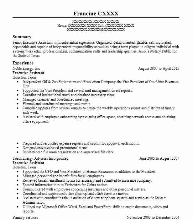 sample resume objectives executive