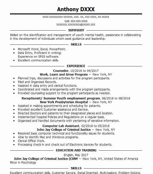 youth counselor resume template