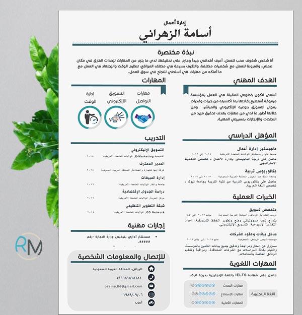 Echo - Beautiful Editable Arabic Resume Template - Resumes Mag