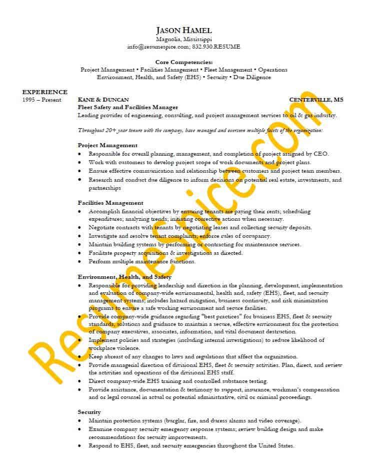 Best Resume Samples for Executives and Professionals ResumeSpice