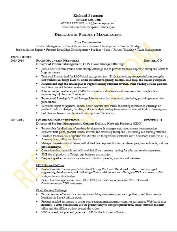 Best Resume Samples for Executives and Professionals ResumeSpice - sample text resume