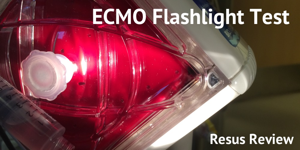 ECMO-Flashlight-Test-Title-Image