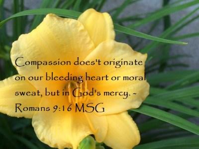 Romans 9:16