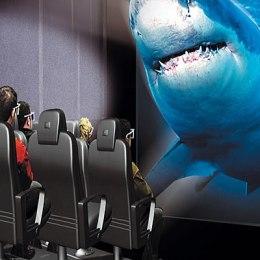 7d_shark