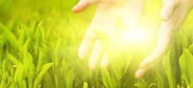 Les méridiens: comment circule l'énergie vitale dans notre corps ?