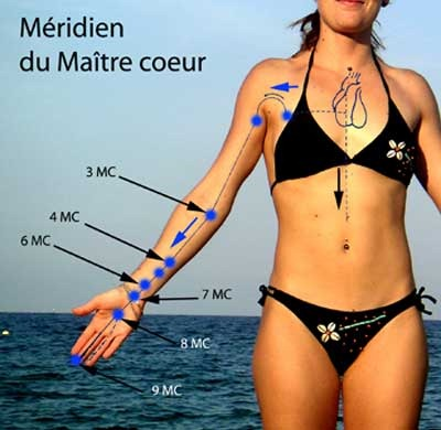 m 233 ridiens acupuncture les m 233 ridiens du corps humain r 233 v 233 lation zen qi gong chi chuan