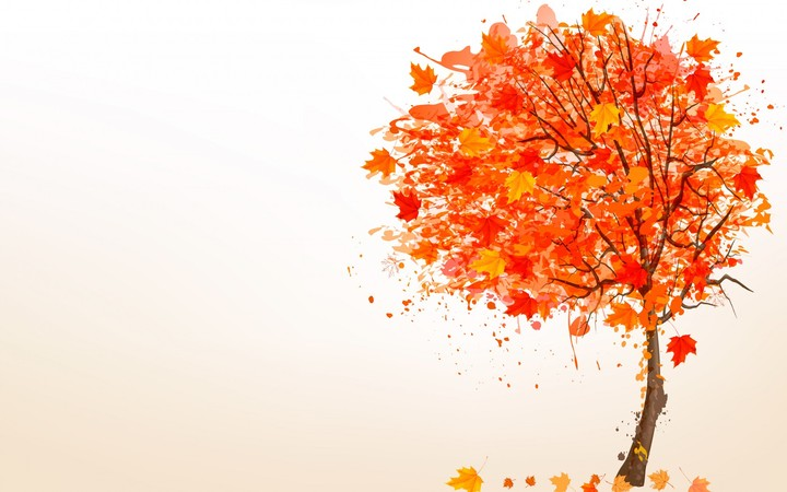 Fall White Pumpkins Wallpaper Yellow Maple Leaves Falling From Tree In Autumn Wallpaper