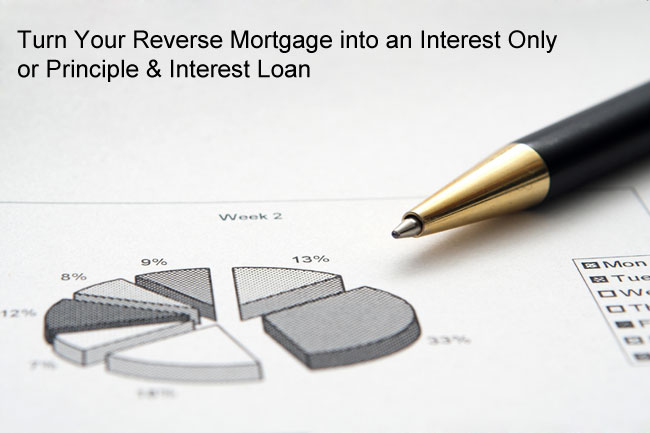 Reverse Mortgage Interest Repayments to Stop Negative Amortization