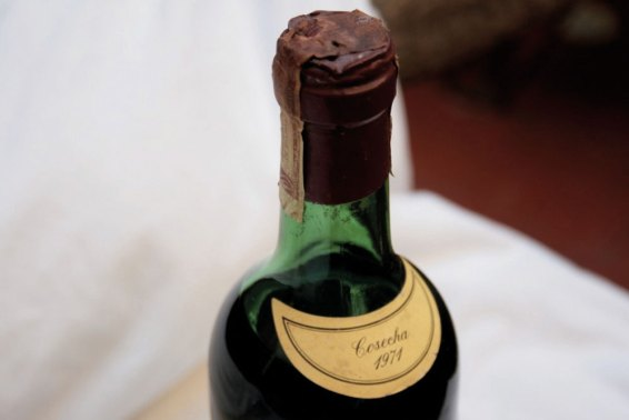 vinos que vuelven