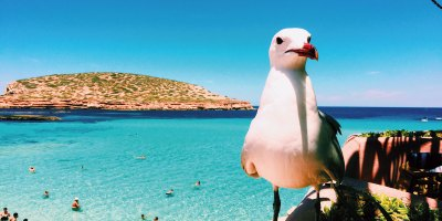Una-Ibiza-distintaPORT