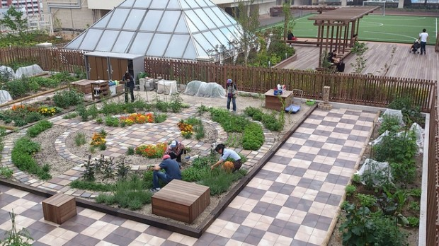 Os jardins e hortas são construídos nos telhados das estações de trem e metrô.