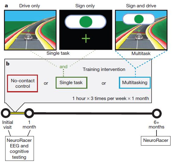 Condições experimentais de NeuroRacer e desenho do estudo. (Anguera, J. Video game training enhances cognitive control in older adults. Nature 501, 97–101 (2013).)