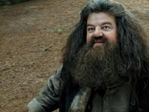 Rubeus Hagrid, guarda das Chaves e Campos de Hogwarts