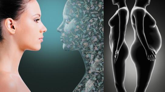 genética flora intestinal